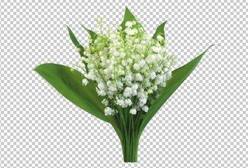 http://s4.pikabu.ru/images/big_size_comm/2014-05_2/13996208951861.jpg
