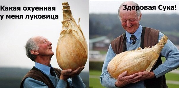 http://s4.pikabu.ru/images/big_size_comm/2016-01_3/1452777053193042624.jpg