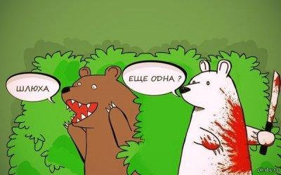 в чем прикол медведь шлюха