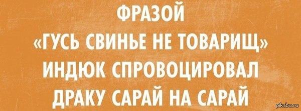 http://s4.pikabu.ru/post_img/2014/03/08/0/1394224129_253814417.jpg