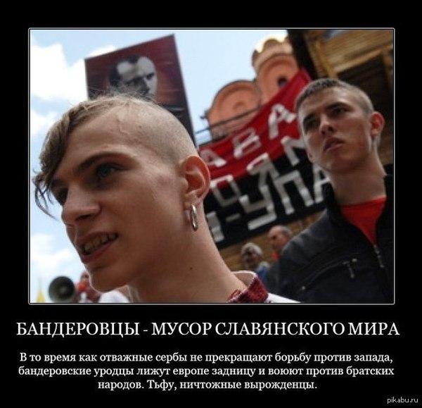 Одиозный экс-нардеп Шепелев сбежал из-под стражи, - журналист - Цензор.НЕТ 1274