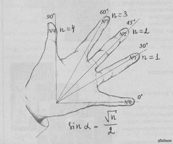 Тригонометрия на пальцах. Вдруг пригодится кому перед ЕГЭ.  тригонометрия, егэ, Рука