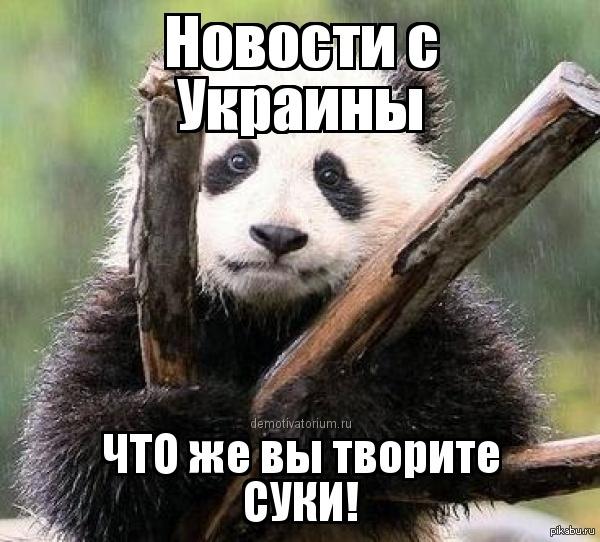 Ротаций воинов в Донецком аэропорту через блокпосты террористов больше не будет, - представитель Генштаба - Цензор.НЕТ 5488