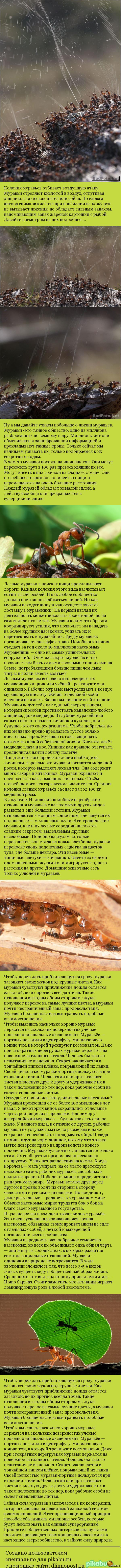 http://s4.pikabu.ru/post_img/2014/06/23/6/1403507063_1544025056.jpg