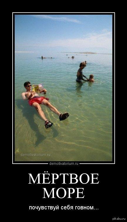 Мертвое море   море, говно, демотиватор