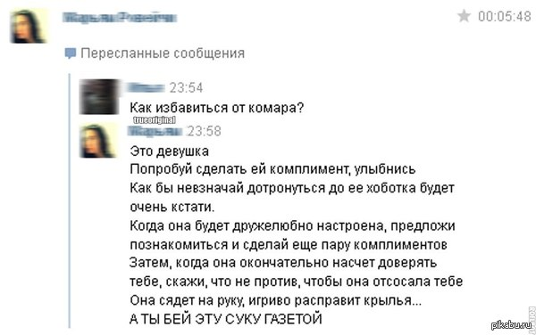 А вдруг влюбишься?   юмор, девушки, комары, ВКонтакте