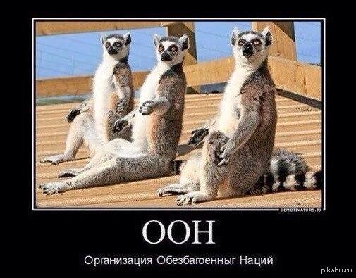 """В Симферополе на бигборде """"Единой России"""" появилась известная надпись про Путина - Цензор.НЕТ 454"""