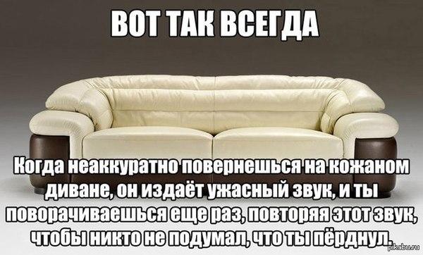 ������ �����)) � ��������� ���������.  �����, ����������