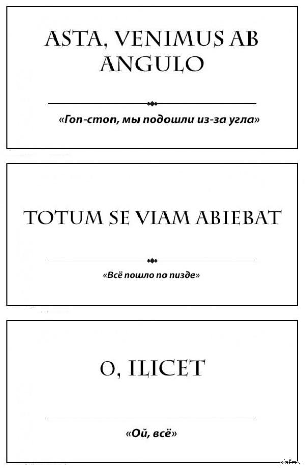 Пизда по латыни