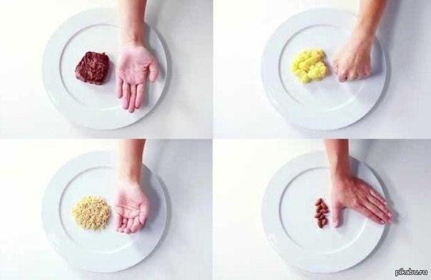 правило ладони при диете