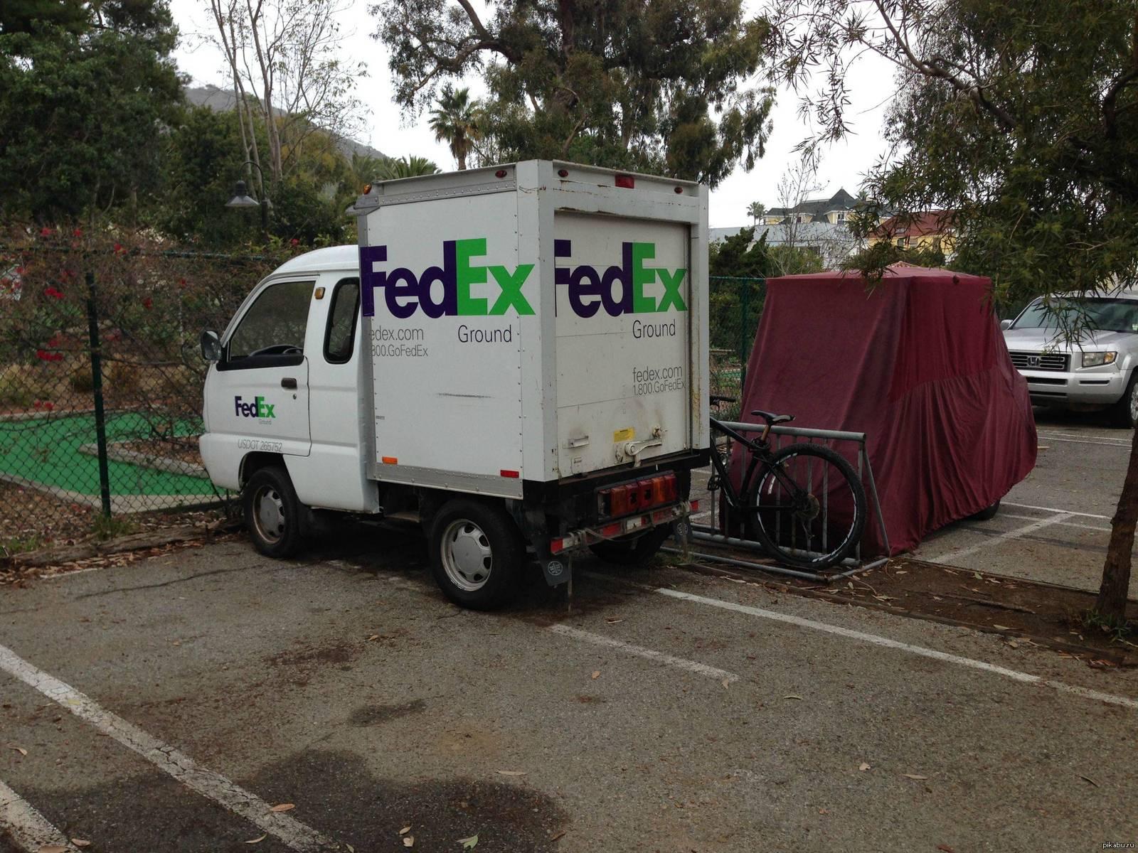 Caveman Download Fedex