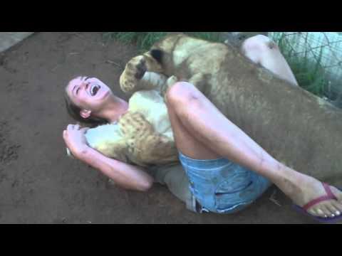 Смотреть порно фильмы с животными113